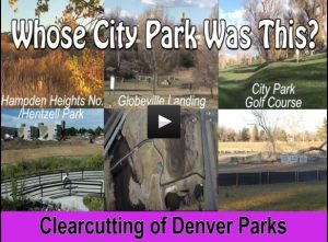 Whose City Park Was This? The Clearcutting of Denver Parks